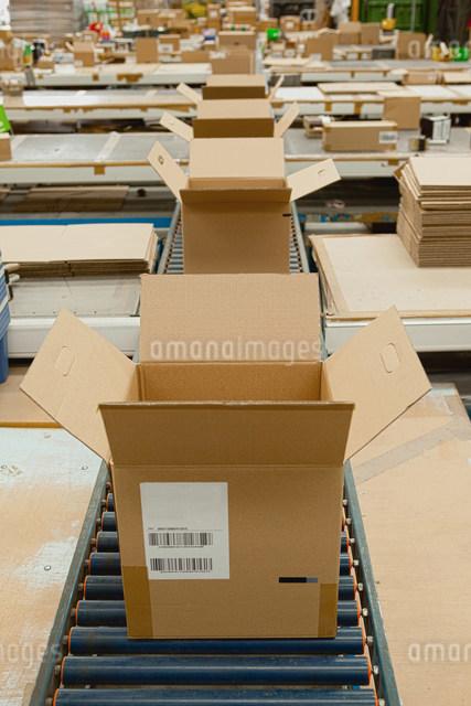 Open cardboard boxes on conveyor beltの写真素材 [FYI03482415]
