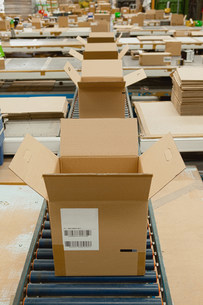 Open cardboard boxes on conveyor beltの写真素材 [FYI03482415]