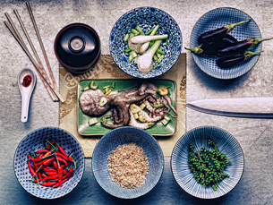 Ingredients in dishes for korean cuttlefish mealの写真素材 [FYI03482921]