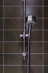 Shower headの写真素材 [FYI03483558]