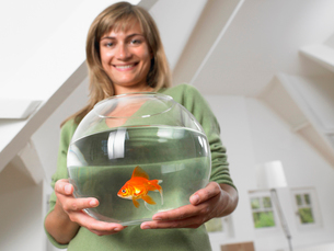 Woman holding fishbowl in new home smilingの写真素材 [FYI03484724]