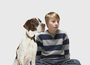 Boy and Pointer looking to the sideの写真素材 [FYI03485653]