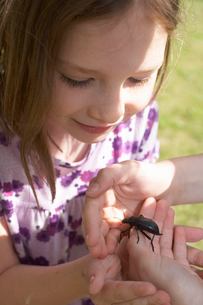 Young girl looking at an insectの写真素材 [FYI03486446]