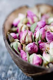 Still-life dry rosesの写真素材 [FYI03486894]