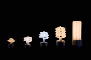 Compact fluorescent light bulbsの写真素材 [FYI03488843]