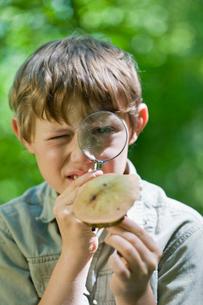 Boy examines a mushroomの写真素材 [FYI03489345]