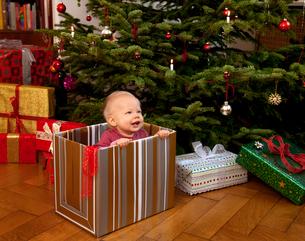 Baby playing inside christmas presentの写真素材 [FYI03490025]
