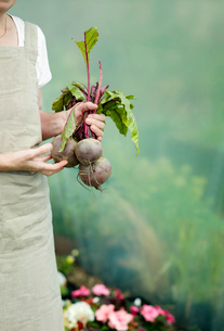 A female holding some Beetrootsの写真素材 [FYI03490343]