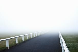 Road leading into fogの写真素材 [FYI03491328]