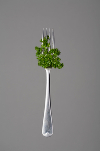Fork with parsleyの写真素材 [FYI03491743]
