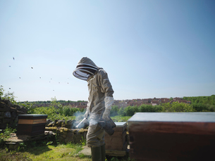 Beekeeper with smoker and hivesの写真素材 [FYI03491892]