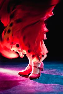 Flamenco feetの写真素材 [FYI03492201]