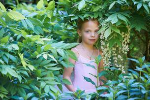 Girl in ballet costume hiding in bushの写真素材 [FYI03494353]