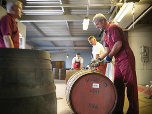 Worker with whisky barrel in distilleryの写真素材 [FYI03494462]