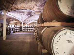 Barrels of whisky aging in distilleryの写真素材 [FYI03494552]