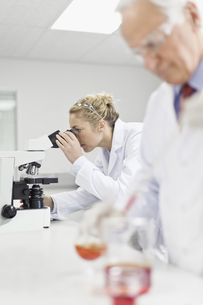 Scientists working in pathology labの写真素材 [FYI03495172]