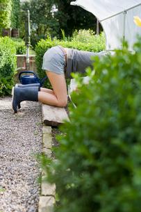 Woman gardening in backyardの写真素材 [FYI03496444]
