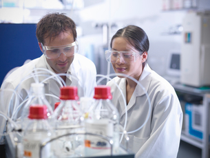 Scientist working together in labの写真素材 [FYI03497796]