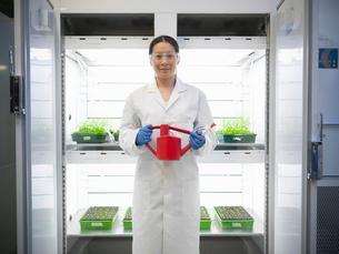 Scientist watering plants in containerの写真素材 [FYI03497799]