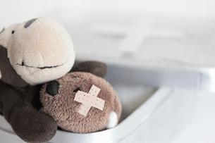 Stuffed animals, one with bandageの写真素材 [FYI03498482]
