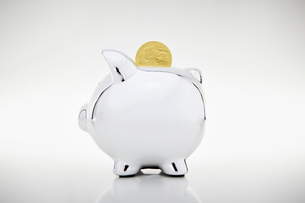 Gold coin dropping into piggy bankの写真素材 [FYI03498804]