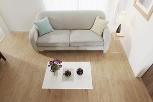 Simple and minimal furnishing in living roomの写真素材 [FYI03499137]