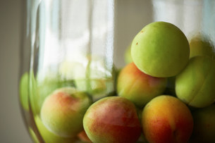 Heap of fresh green plums in bowlの写真素材 [FYI03499530]