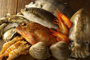Still life with selection of seafoodの写真素材 [FYI03499574]
