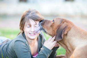 Dog licking girl's faceの写真素材 [FYI03499987]