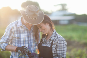 Young couple looking at vegetables on farmの写真素材 [FYI03500128]