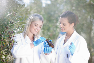 Two women with sample of olive oil in olive groveの写真素材 [FYI03500263]