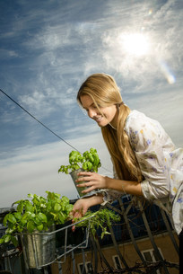 Young woman holding pot plantの写真素材 [FYI03500335]