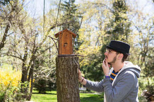 Man looking at birdhouse with hand on chinの写真素材 [FYI03501547]
