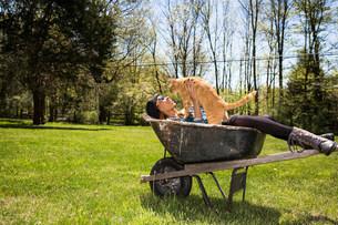 Woman in wheelbarrow holding ginger catの写真素材 [FYI03501570]