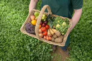 Farmer carrying organic vegetables in basket for delivery, cの写真素材 [FYI03502150]