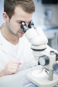 Dental technician looking through microscope at false toothの写真素材 [FYI03504208]