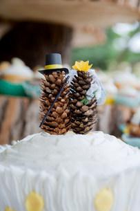 Fir cone models on top of wedding cakeの写真素材 [FYI03505166]