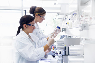 Biology students working in labの写真素材 [FYI03505833]