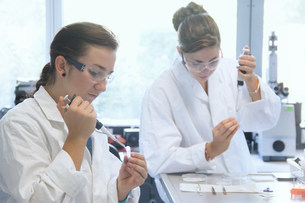 Biology students working with pipettes in labの写真素材 [FYI03505834]