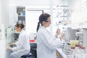 Biology students working in labの写真素材 [FYI03505835]