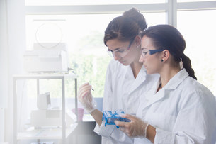 Biology students working in labの写真素材 [FYI03505838]