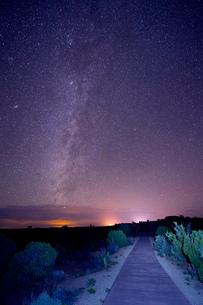 Stars in night sky, Moab, Utah, USAの写真素材 [FYI03508186]