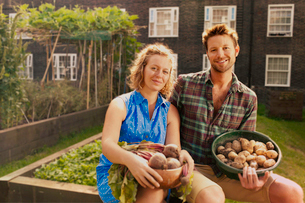 Couple with harvested potatoes and beets on council estate allotmentの写真素材 [FYI03508860]