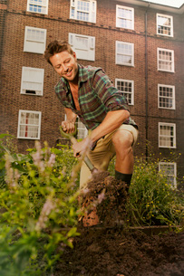 Mid adult man digging on council estate allotmentの写真素材 [FYI03508861]