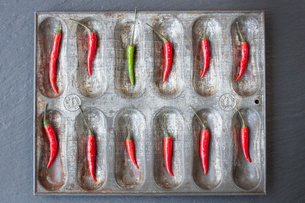 Large group of red chillies and one green chilli ordered in baking tinの写真素材 [FYI03510965]
