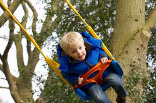 Young boy playing on garden swingの写真素材 [FYI03511438]
