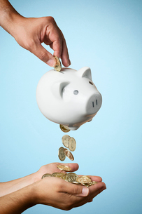 Hand putting coin into piggy bank and coins flowing outの写真素材 [FYI03512289]