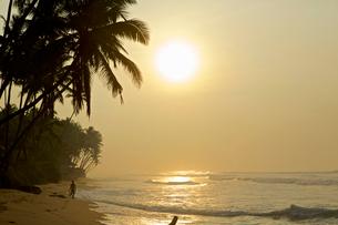 Tranquil beach in morning light, Galle, Sri Lanka, Asiaの写真素材 [FYI03512630]