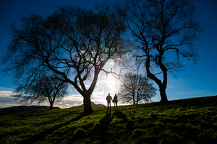 A young couple hold hands on Calton Hill in Edinburgh, capital of Scotlandの写真素材 [FYI03512708]