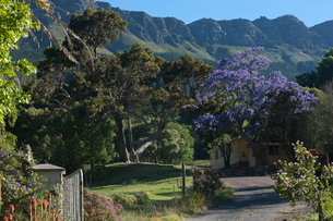 View of tranquil rural village, South Africaの写真素材 [FYI03516701]